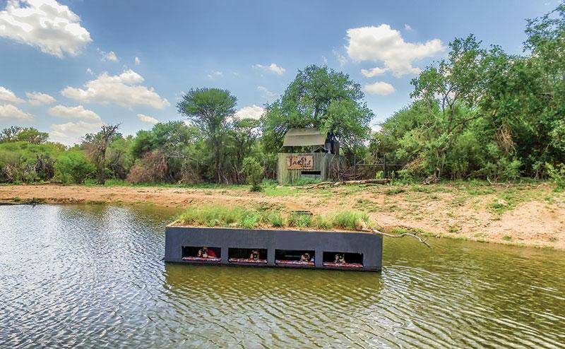 Terrapin Hide, Jaci's Safari Lodge