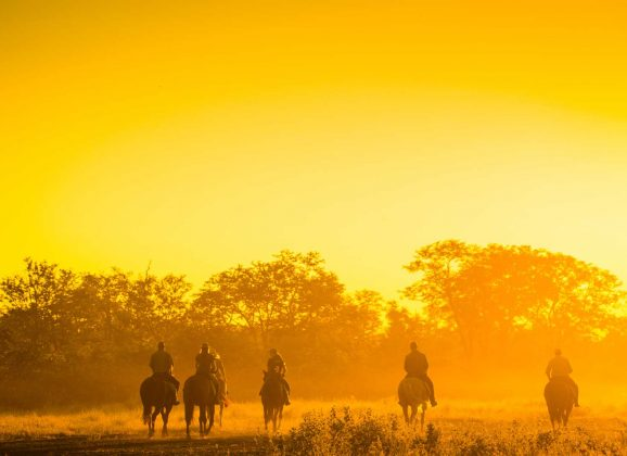 Africa on Horseback: Places for a horse riding safari