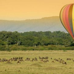 Safari Hot Air Ballooning Options in Southern and East Africa