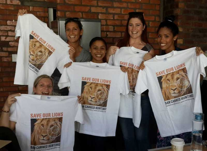 Sun Safaris Save Lions
