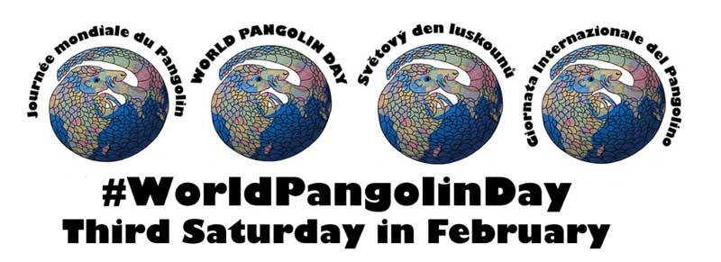 World Pangolin Day