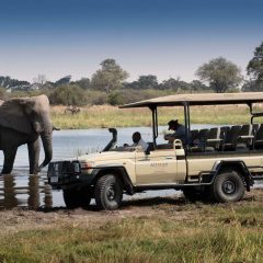 Best Botswana Family Safari at Khwai Bush Camp