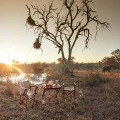 Natasha's Top 5 Kruger Safari Lodges Part 2!