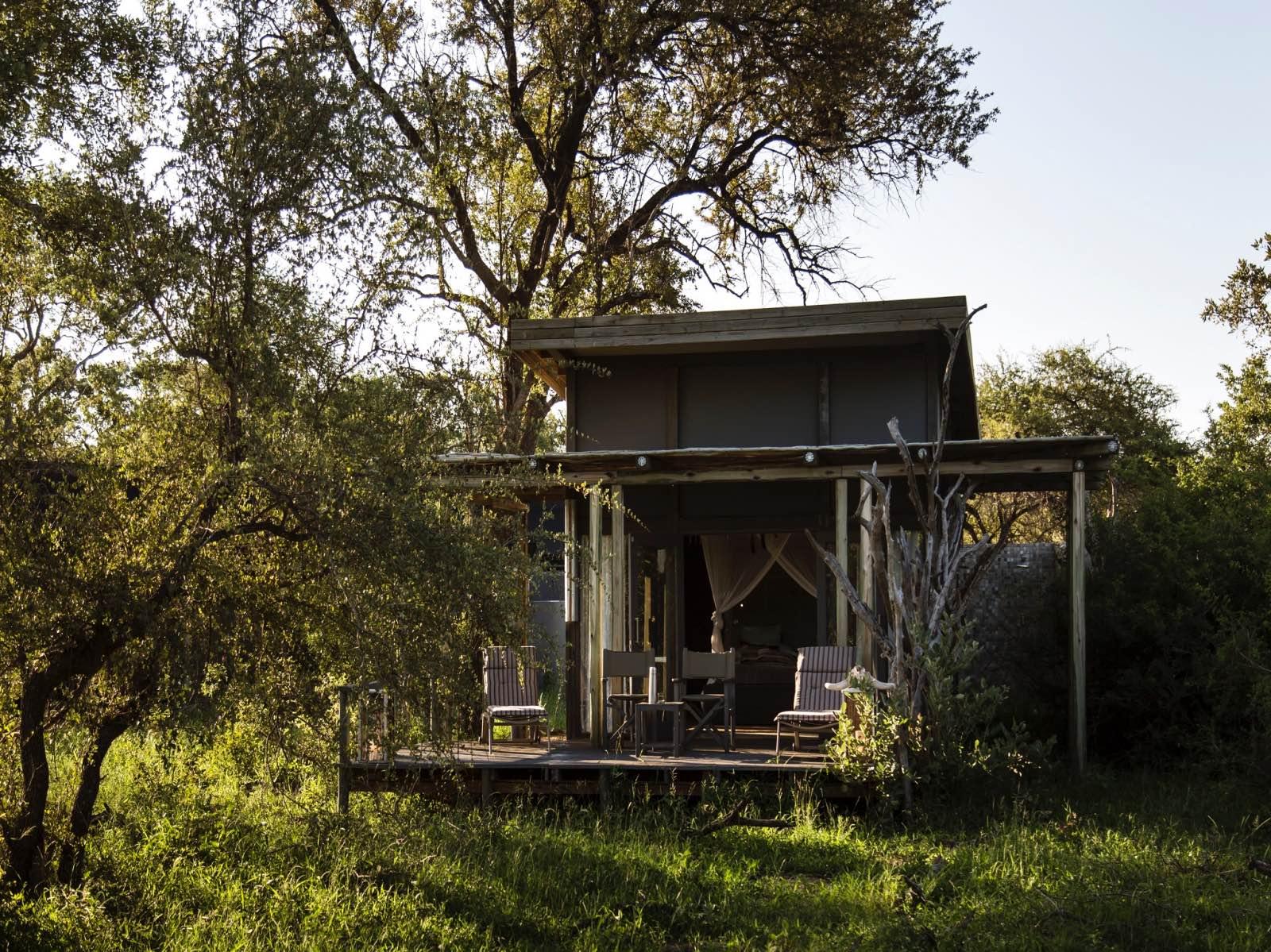 Simbavati River Lodge's luxury safari tent disguised in the lush summer bushveld