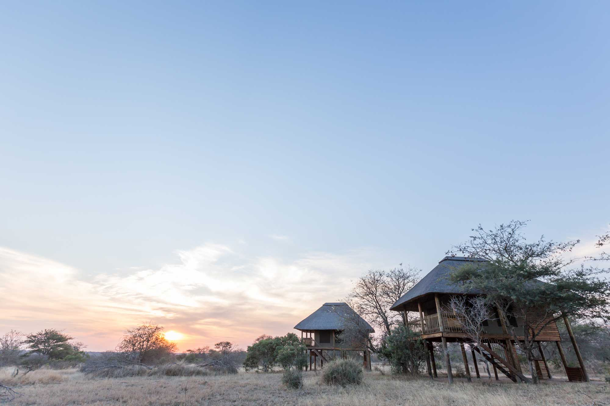 nThambo Tree Camp guest chalets, raised on wooden stilts overlooking the open plain