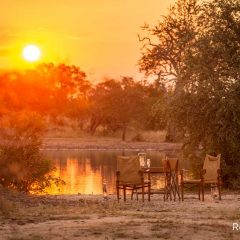 4 Things Synonymous with a South African Safari
