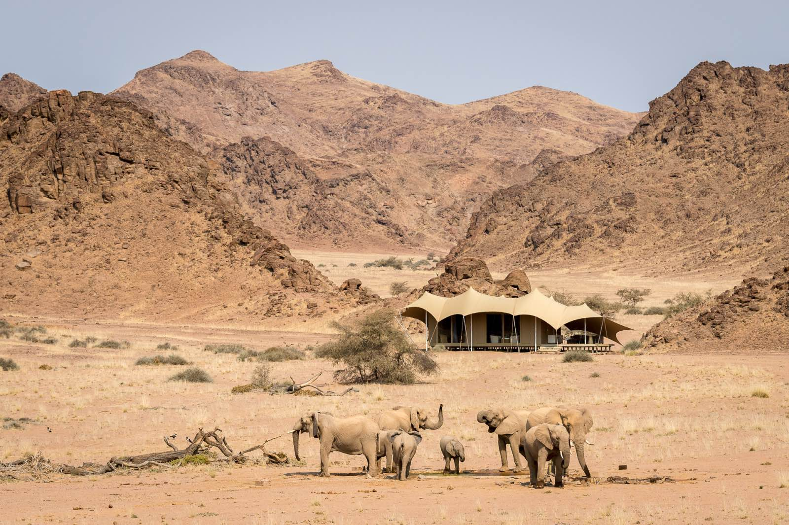 , Our Expert's Opinion on a Desert Safari: Top 10 Lodges in Namibia