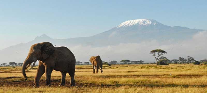 Keeroko Masai