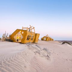 Our Expert's Opinion on a Desert Safari: Top 10 Lodges in Namibia