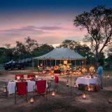 Client Feedback : Kruger Safari to Tanda Tula and Simbambili