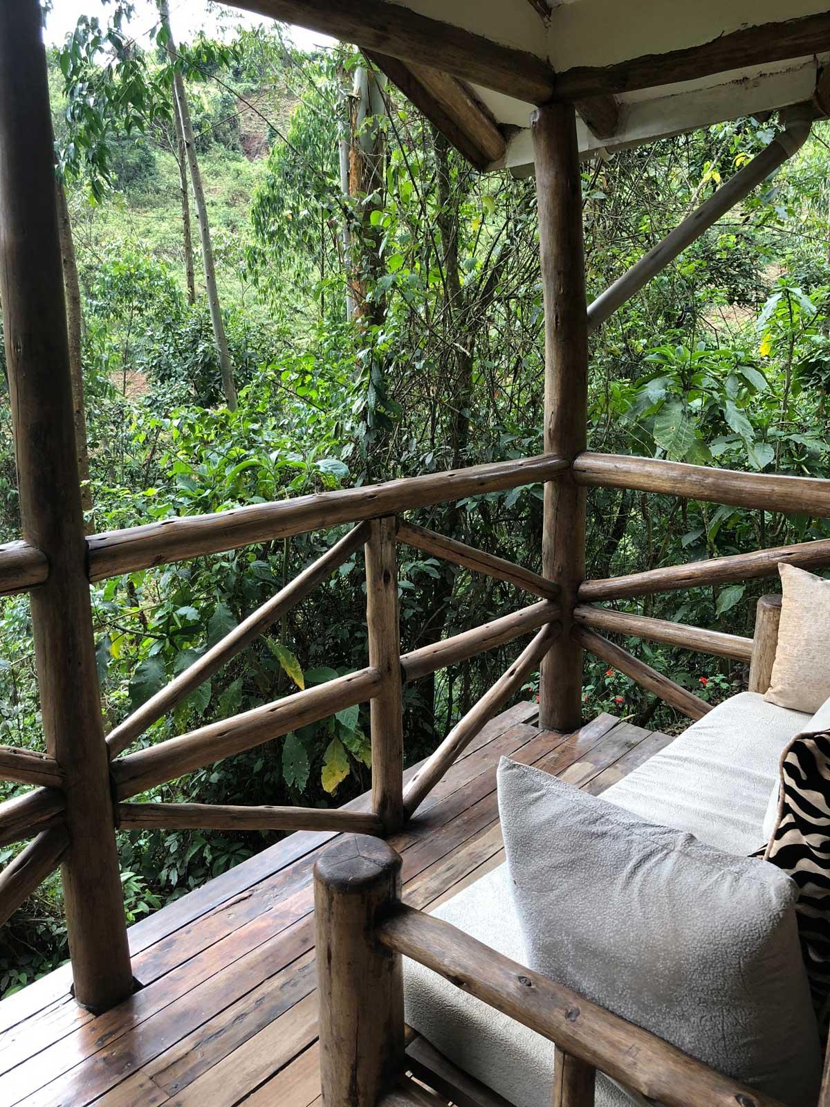 Gorilla Safari Lodge in Uganda