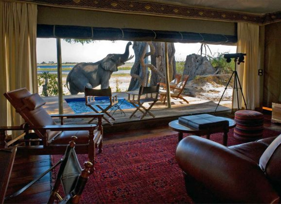 Expert Advice: 10 Best Safari Camps in Botswana