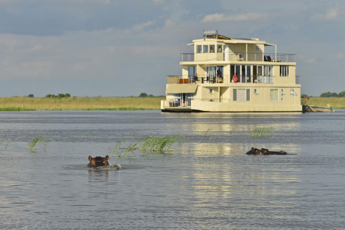 Chobe Princess Houseboat with Hippos