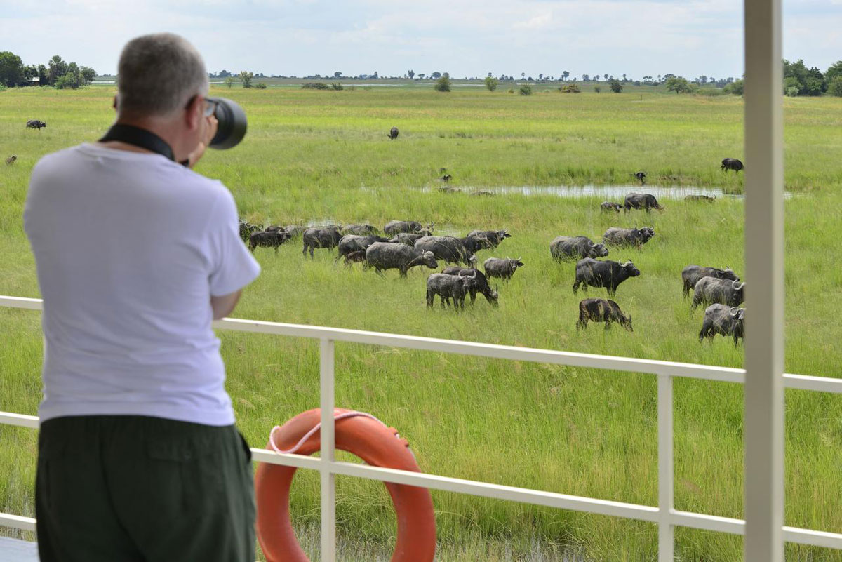 Chobe Princess Houseboat Game Viewing