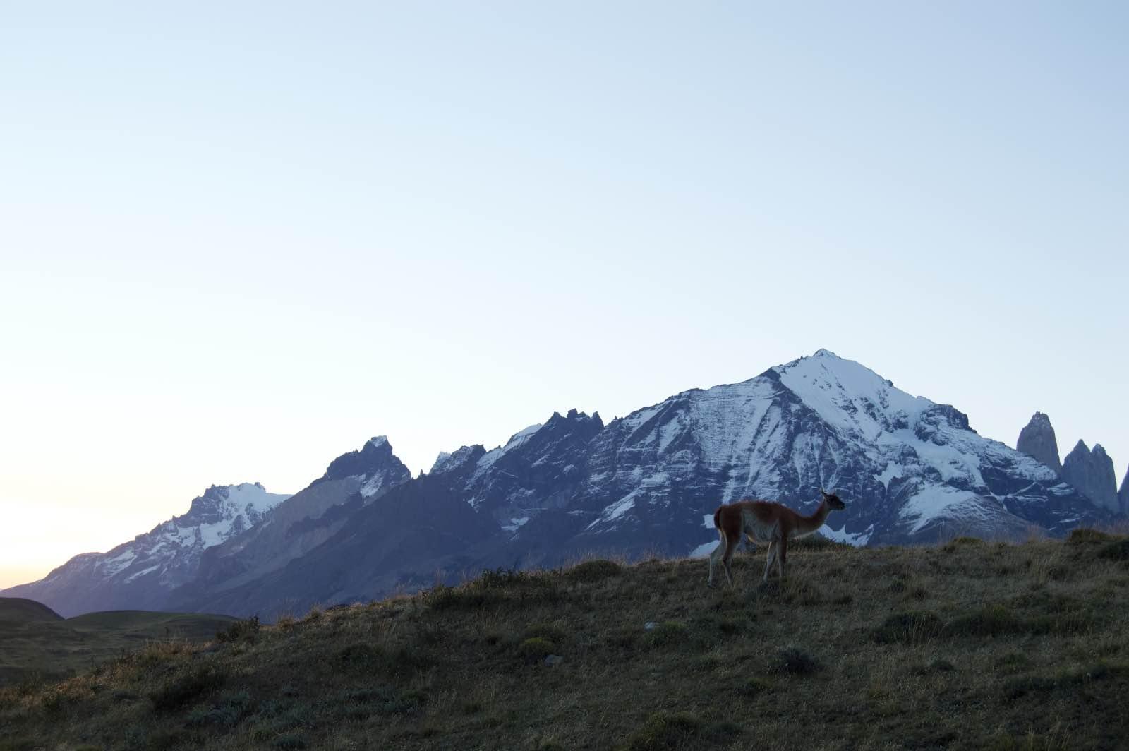 Laguna Amarga, Torres del Paine Mountain Range