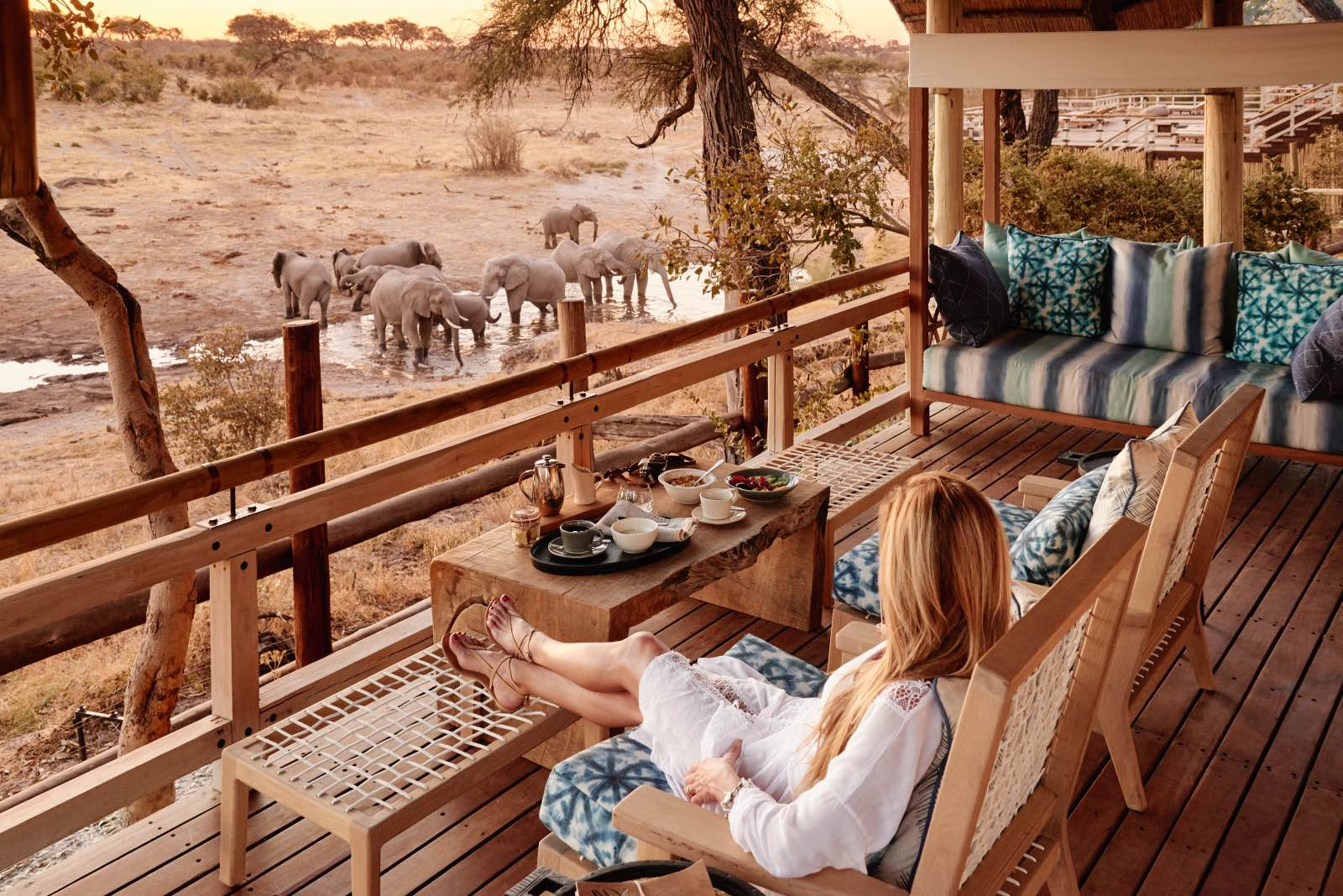 Elephants in front of the lodge while guest looks on at Savute Elephant Lodge