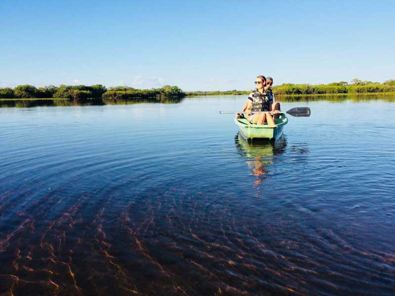 Brazil's Pantanal, Brazil's Pantanal : We Interview Liselle About Her Trip