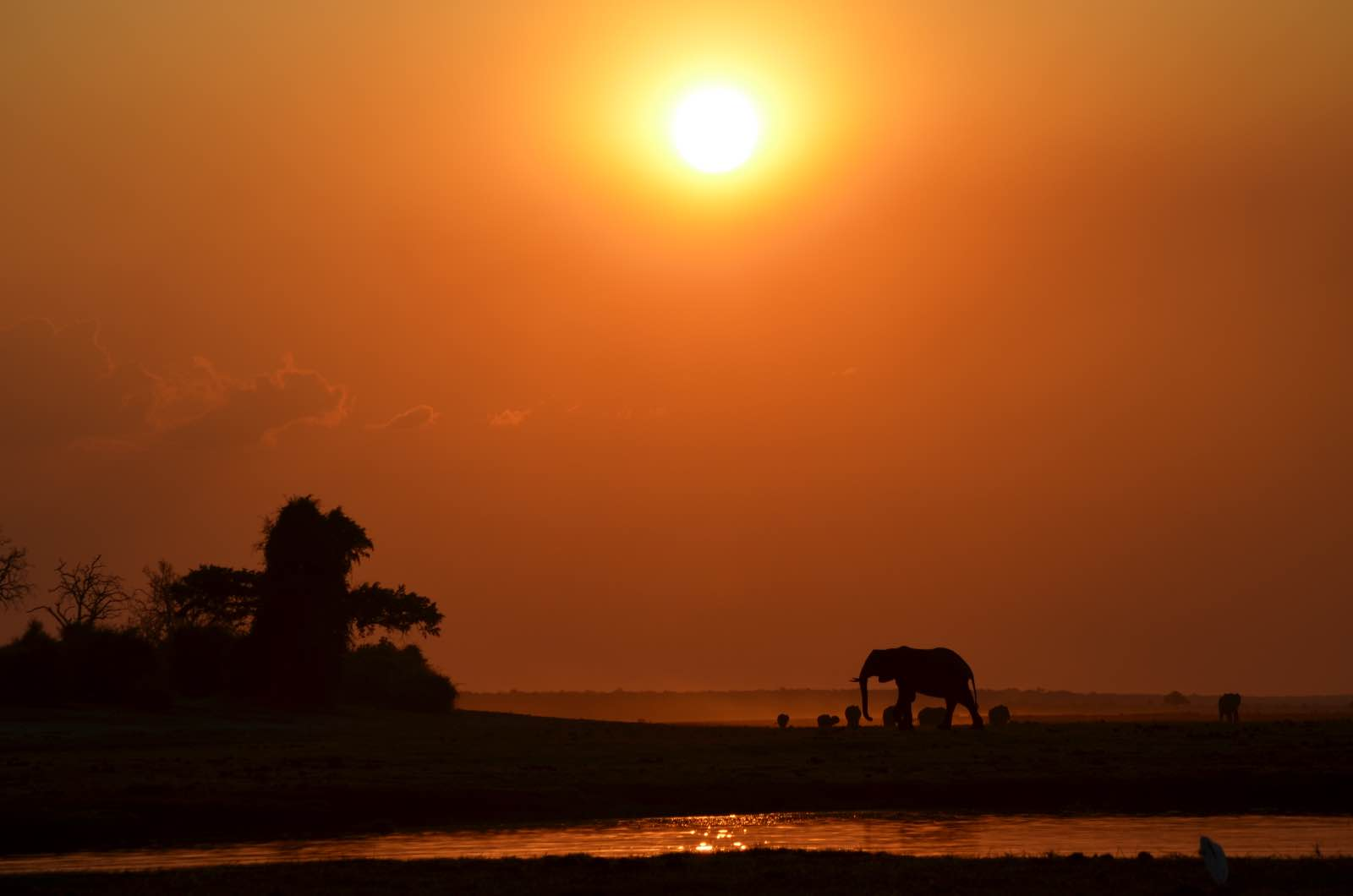 Scenes of a sunset at Chobe River at Chilwero