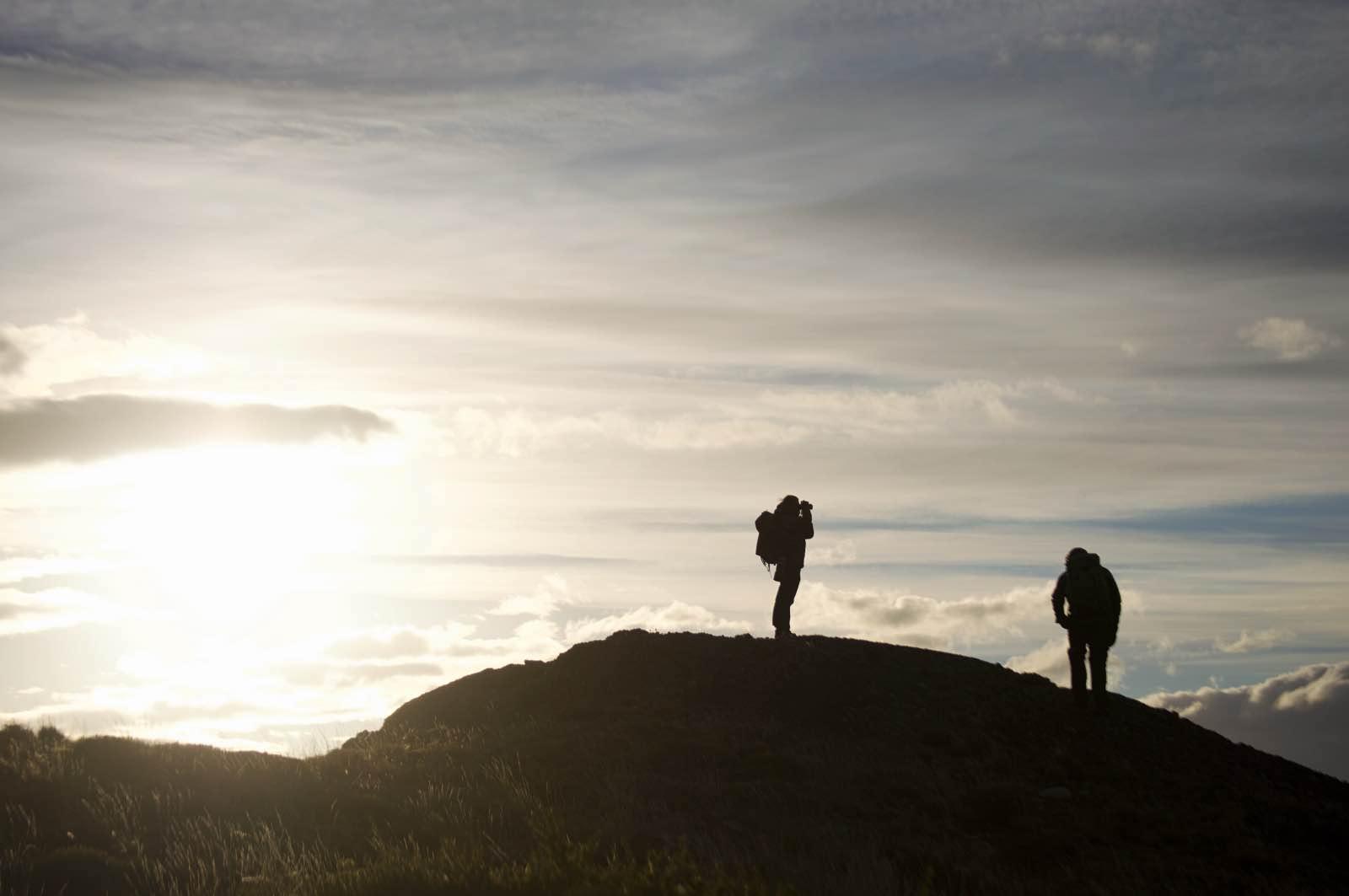 Laguna Amarga puma tracking, Torres del Paine