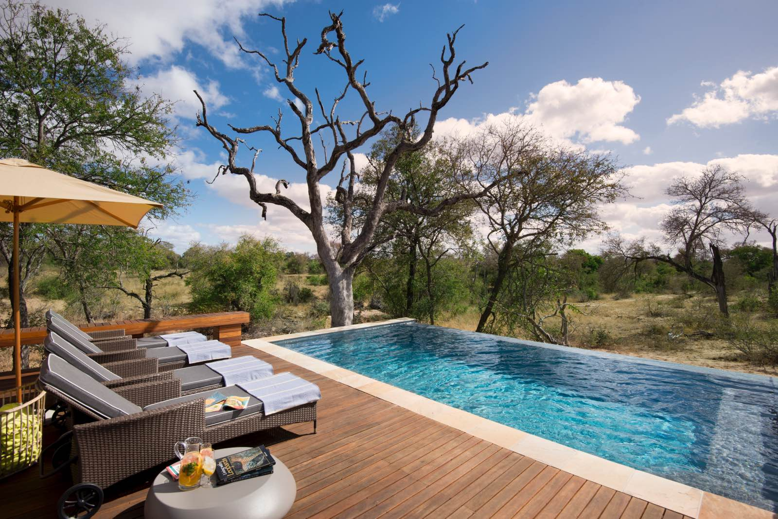 The rim flow pool and sun loungers looking onto the bush