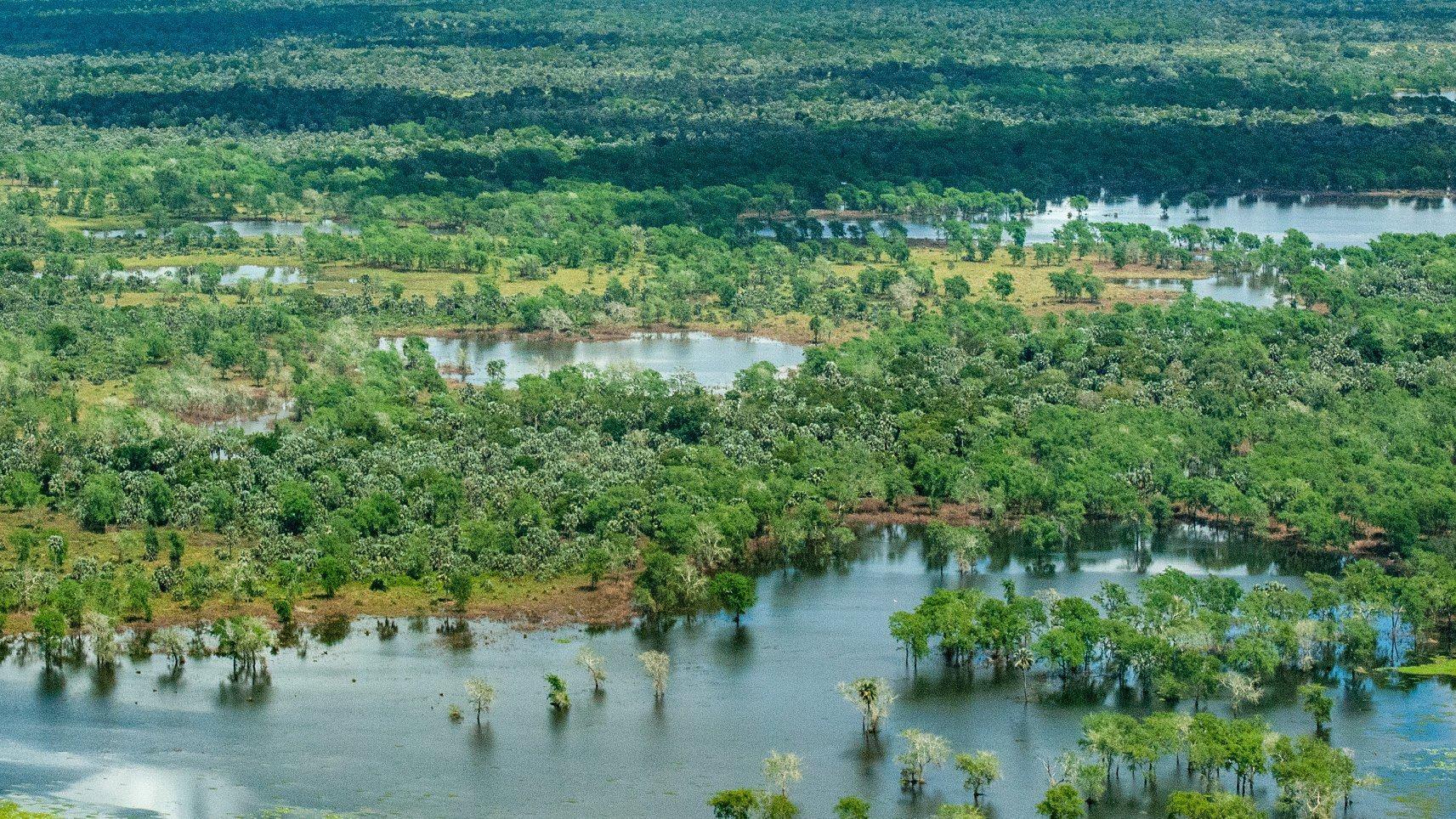 Gorongosa National Park aerial