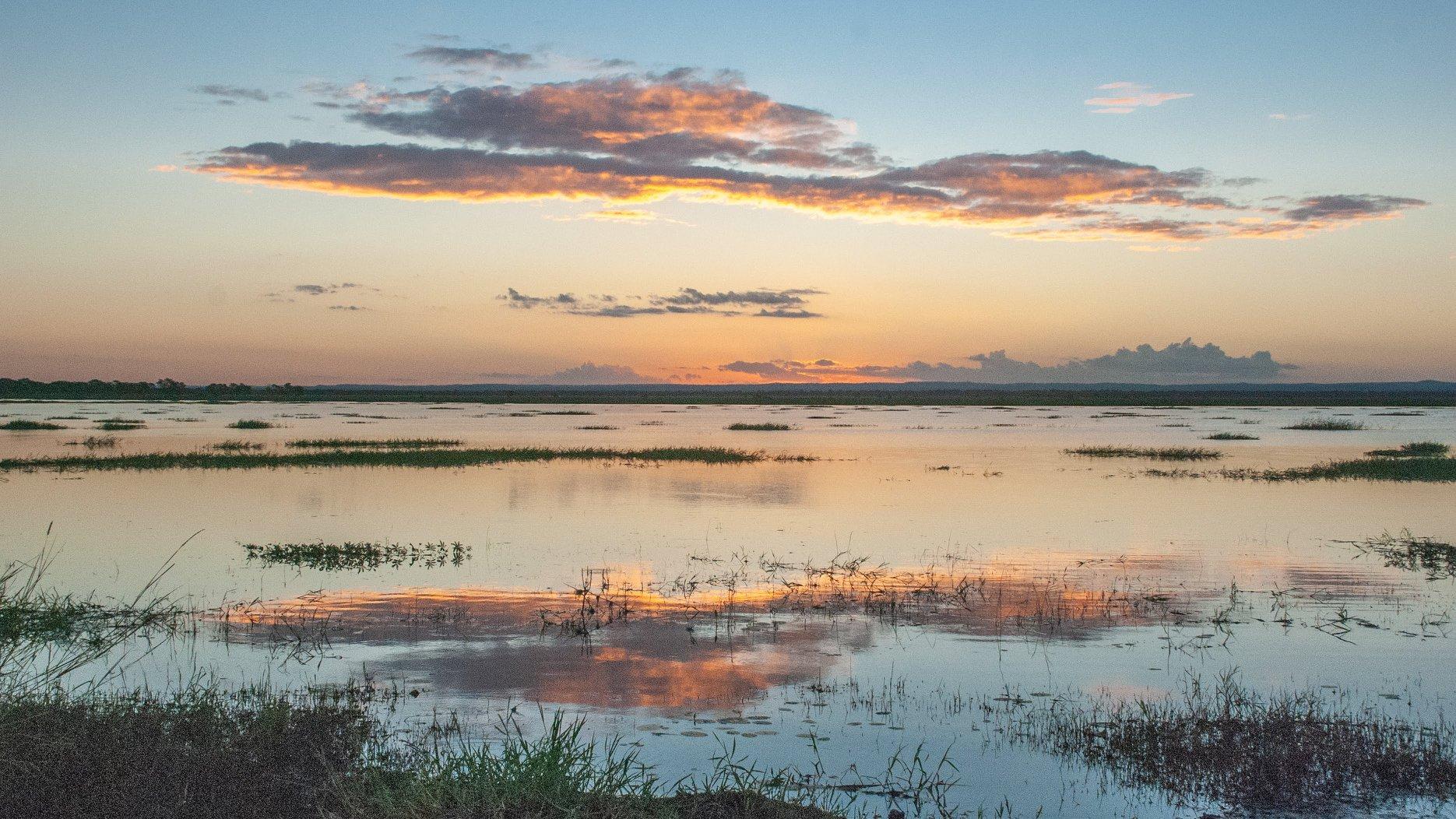 Gorongosa National Park landscape