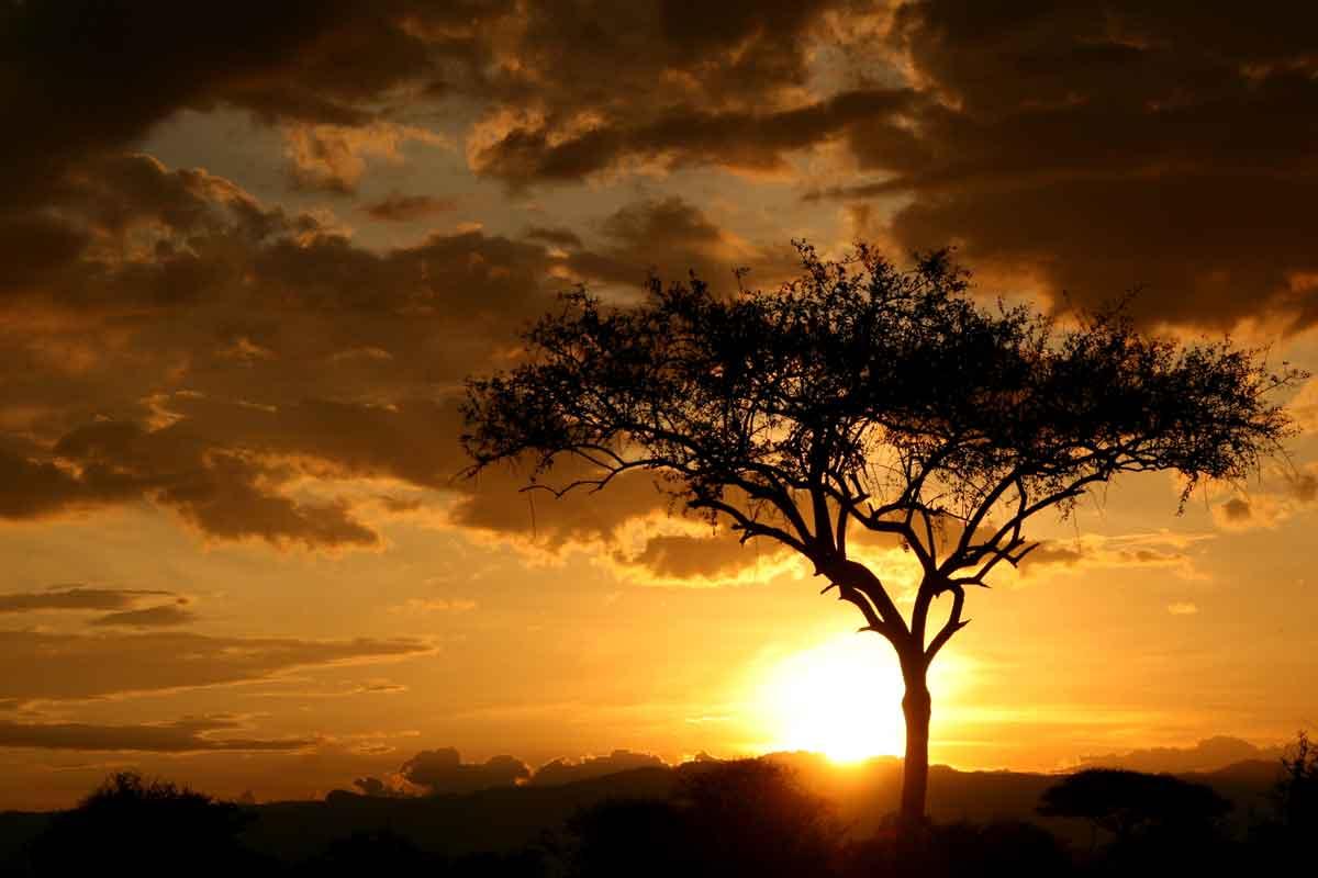 Kruger Sunsets in Africa