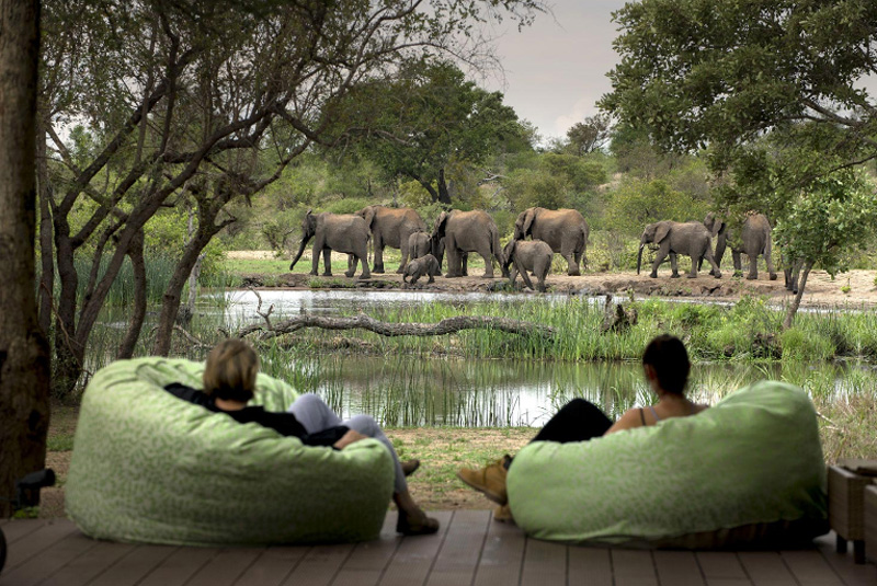 Tanda Tula Viewing Decks