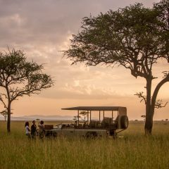 Faru Faru Lodge: Everything the light touches is yours