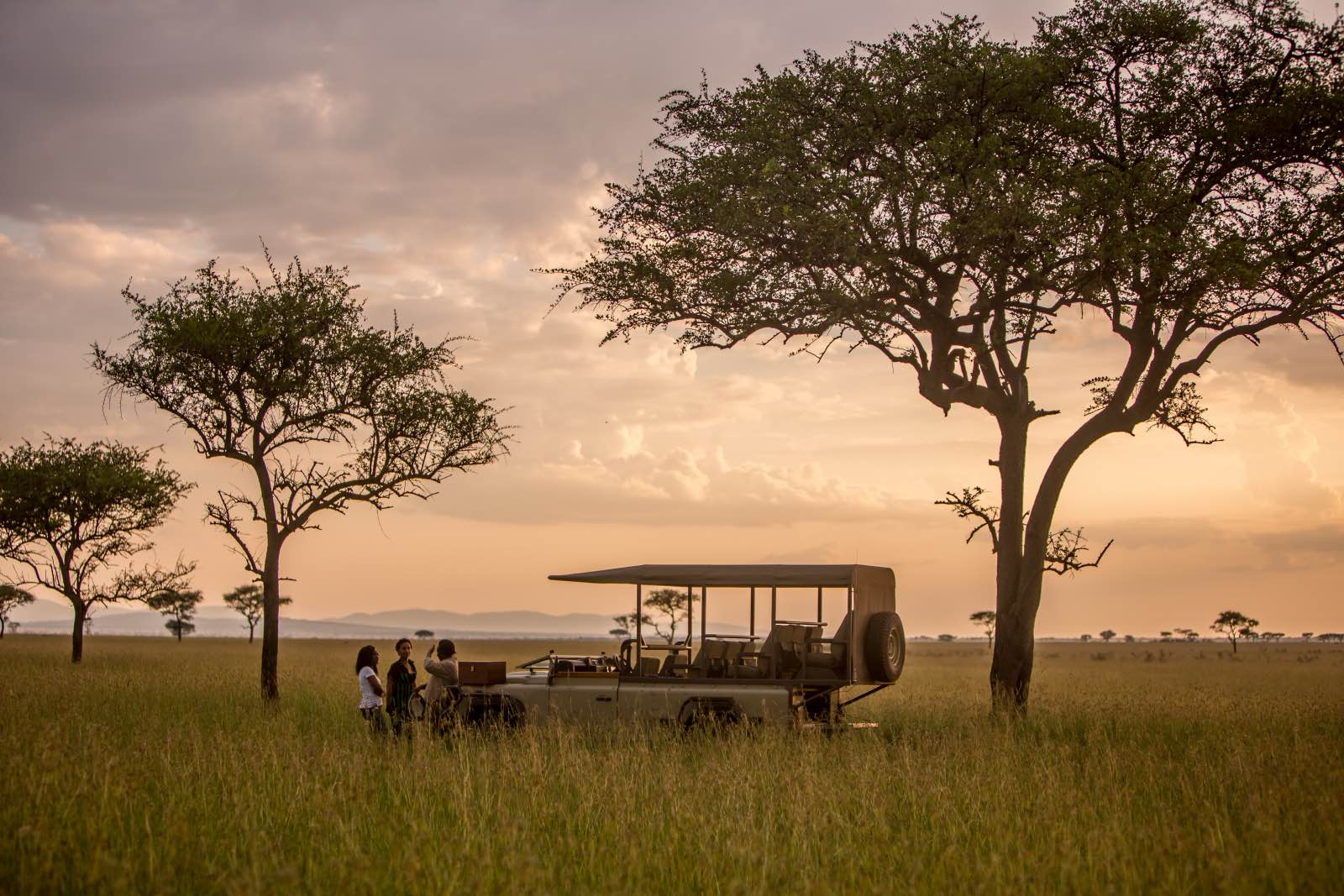 Exclusive access to the 350 000 acre conservancy for guests of Singita