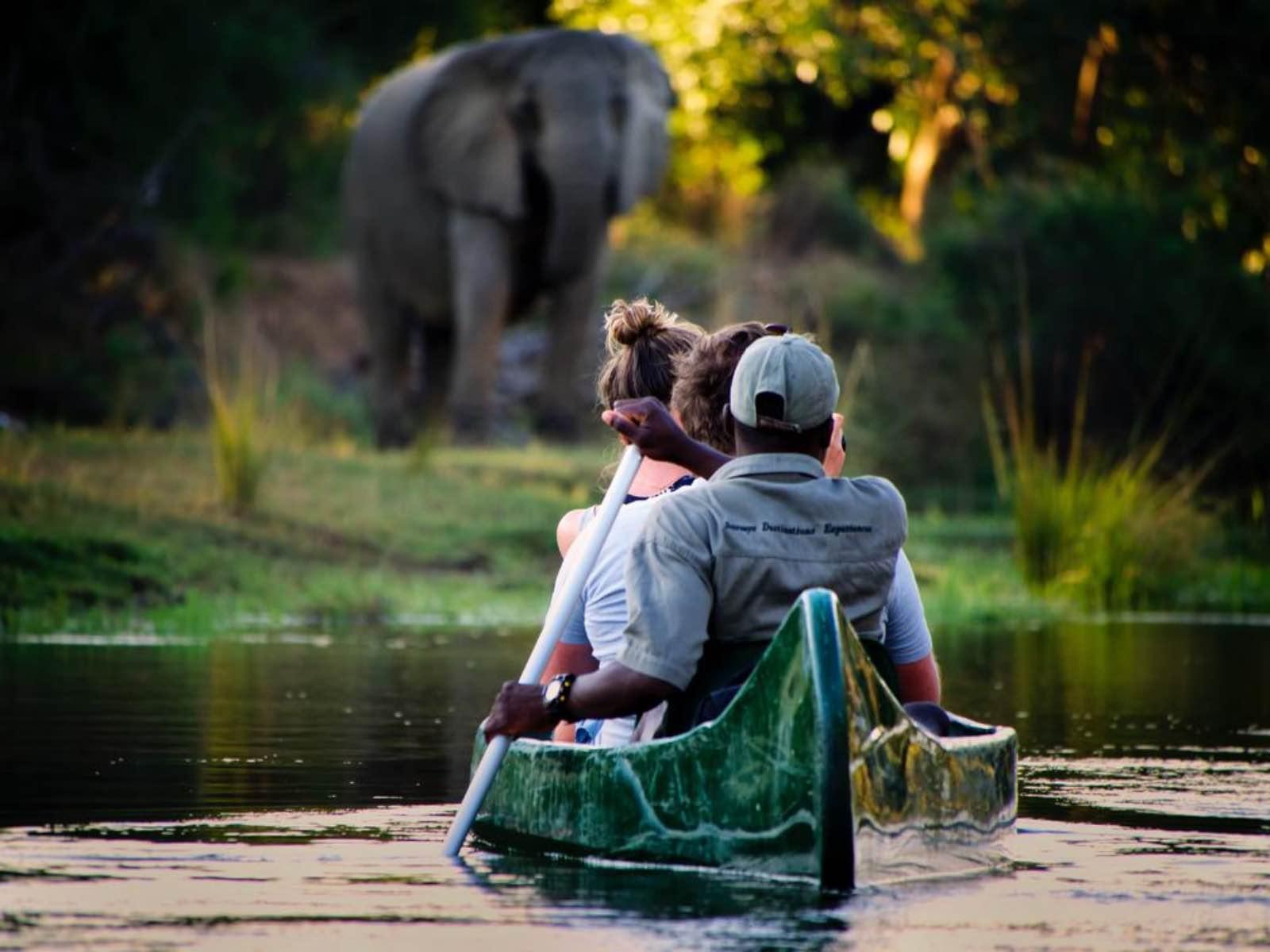 Chongwe River Camp canoe with elephants