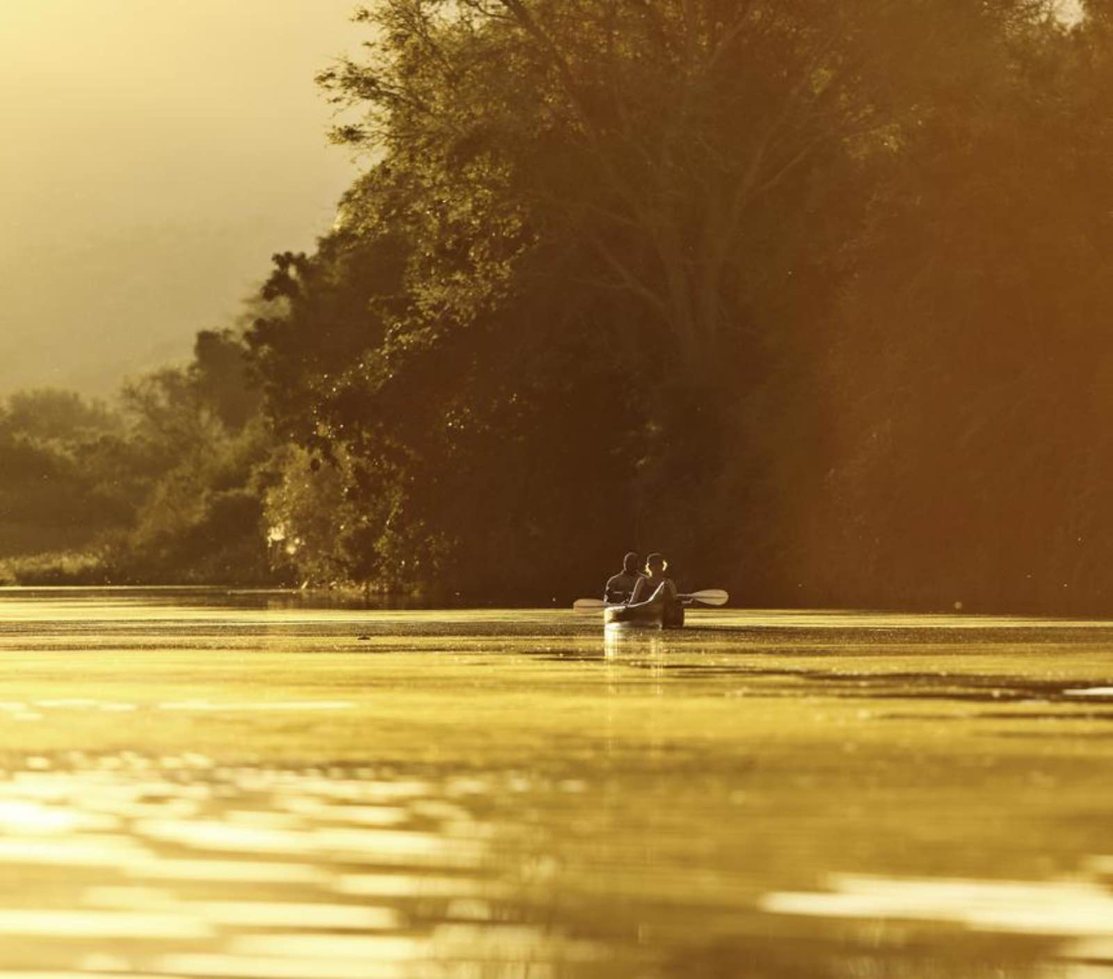 Chongwe canoeing at golden hour