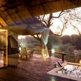 Why you MUST Visit the Balule Nature Reserve for a Big 5 Safari