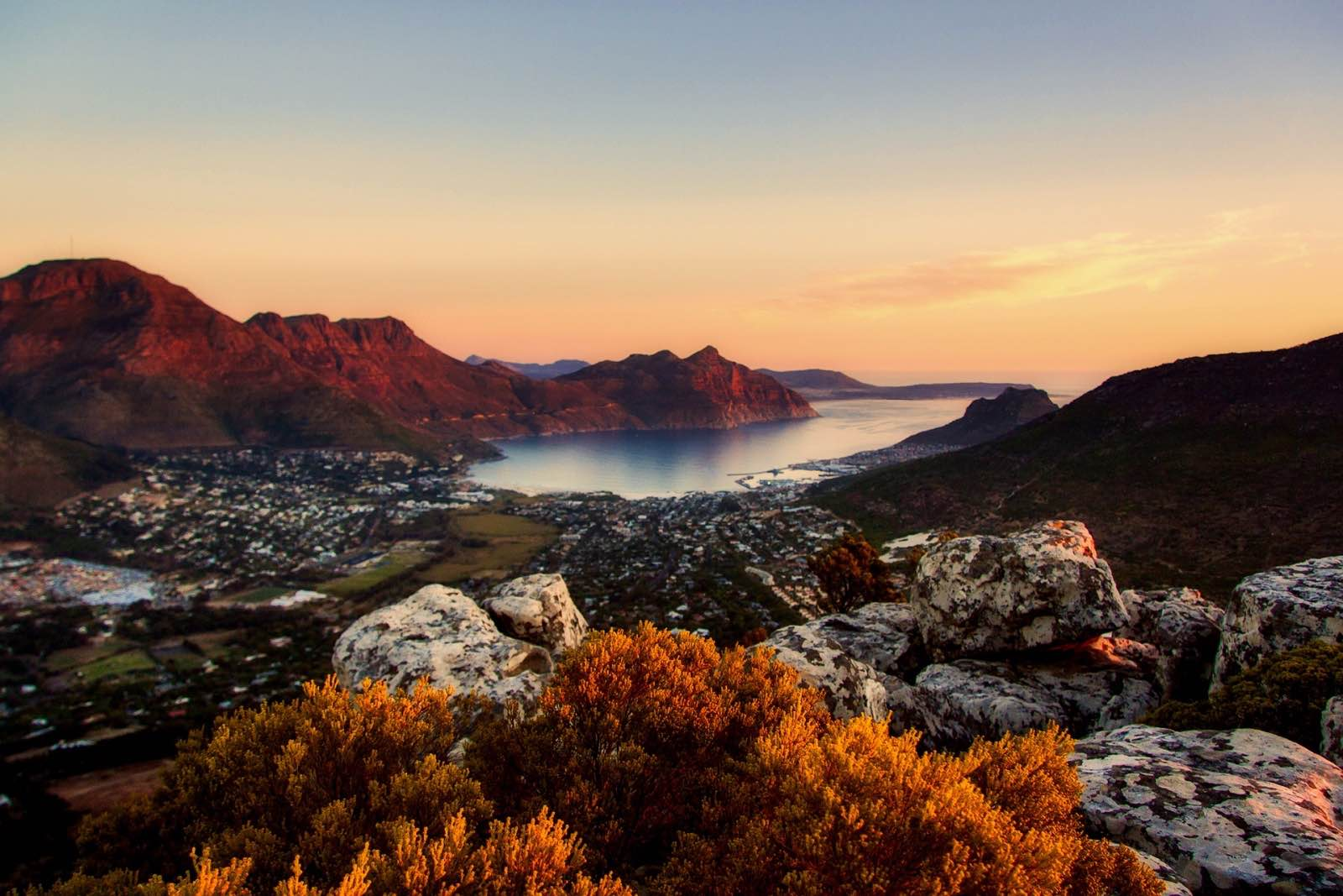 Cape Town 1 of 3 African cities in global City Nature Challenge 2019