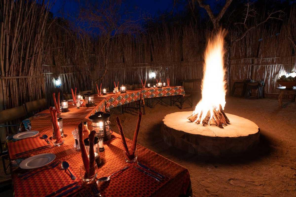 Sausage Tree in Balule - Boma Nights