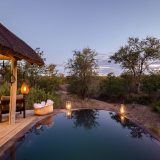 Client Feedback : Nsala Safari Camp and nThambo Tree Camp
