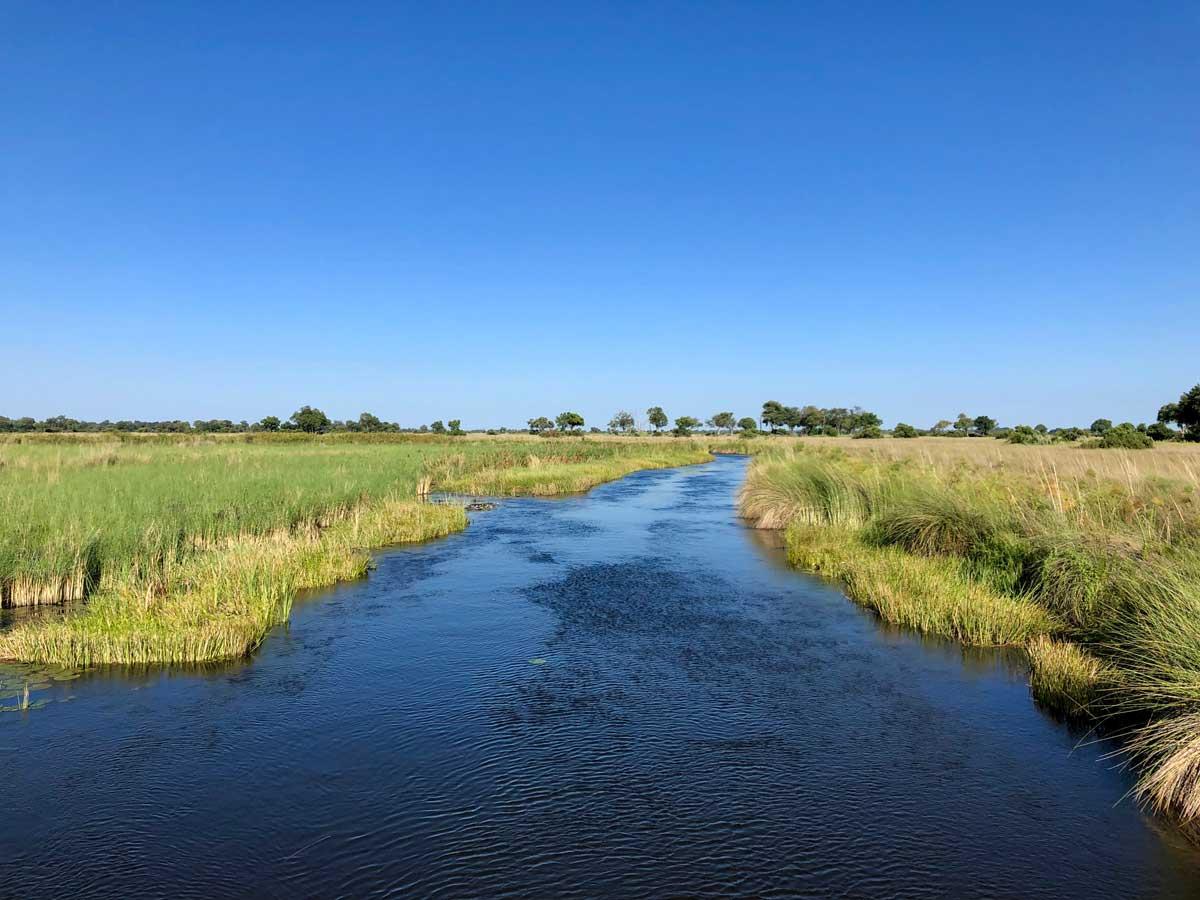 Botswana Delta River
