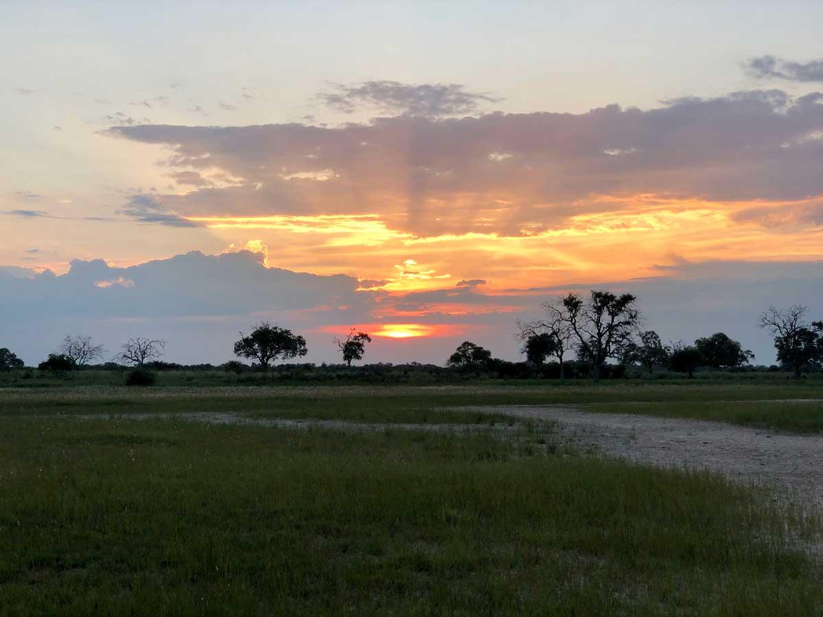 Botswana at Sunset