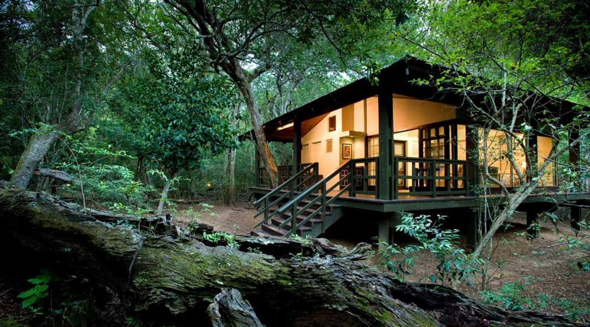 Phinda Accommodation