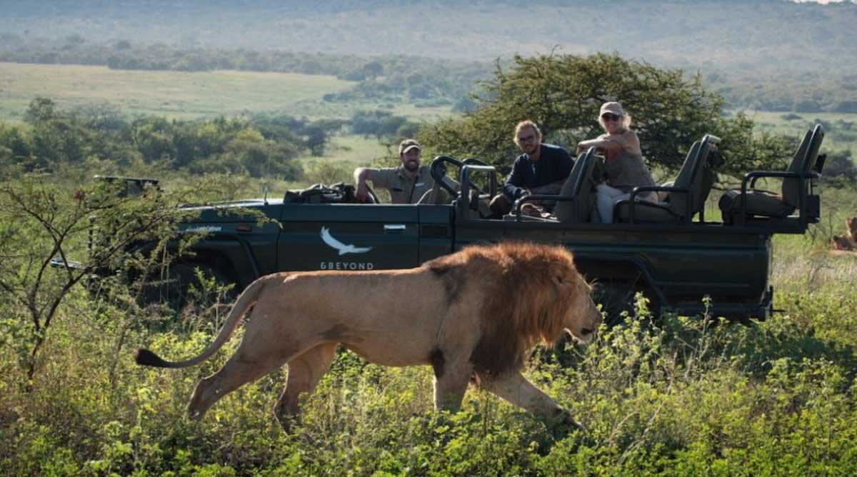 Yoga Safaris in Africa, Yoga Safaris in Africa