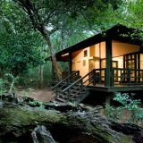 Client Feedback : Wine Country to Safari Bushveld