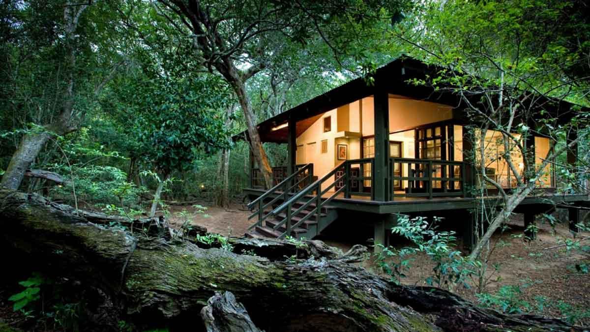 , Client Feedback : Wine Country to Safari Bushveld