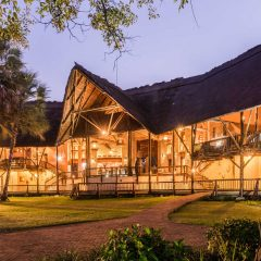 Client Feedback : Cape to Kruger to Vic Falls