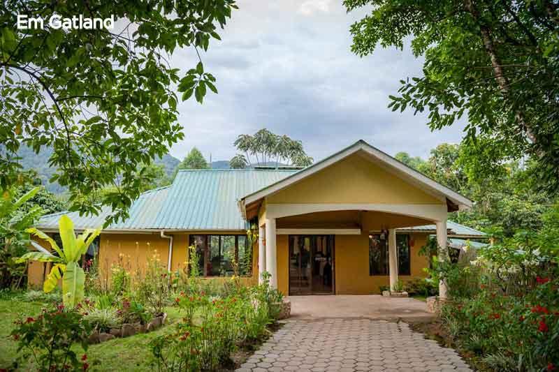 Entrance to Gorilla Safari Lodge