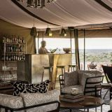 What is the Best Safari Lodge in South Africa?