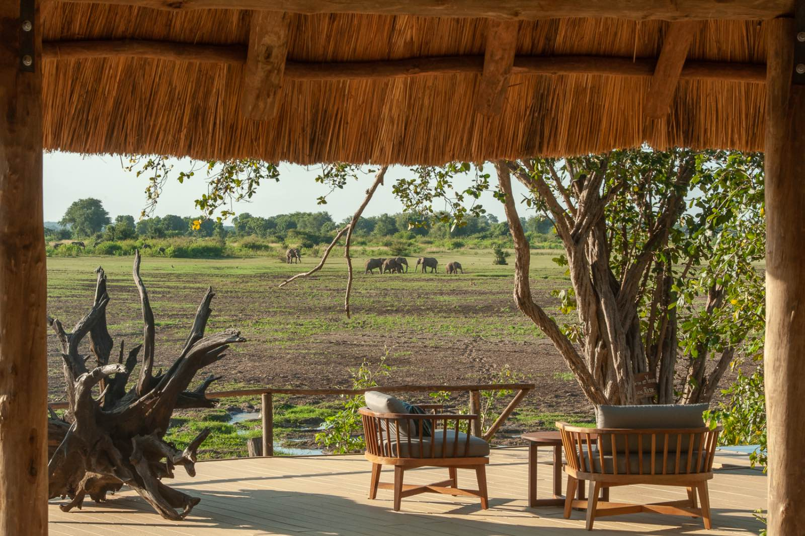 Watching elephants from the deck at Kafunta River Lodge