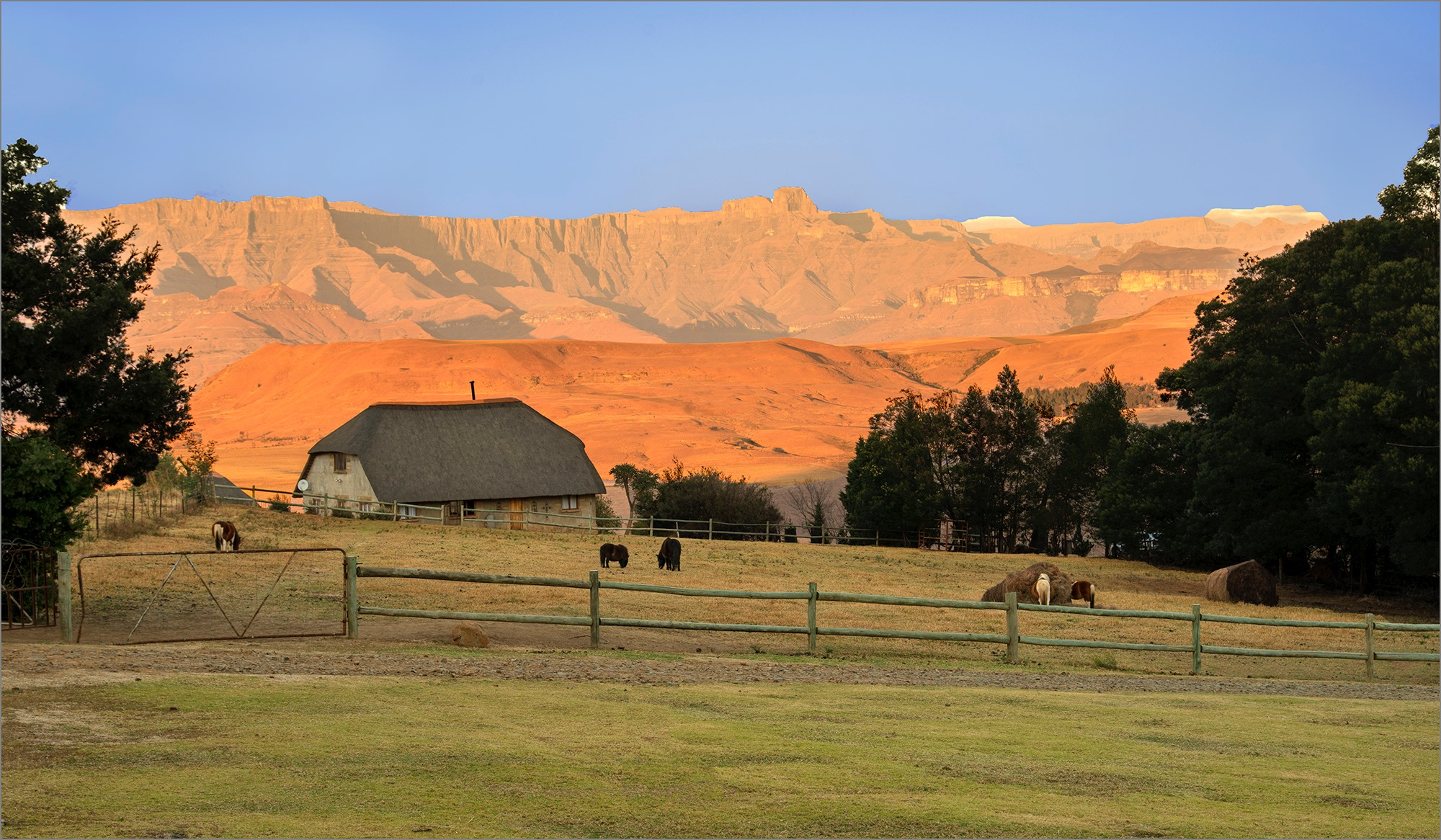 Berghouse and cottages incredible view of the Drakensberg Amphitheatre from the farm