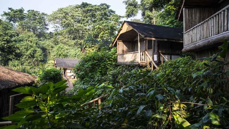 Buhoma Lodge in the Jungle