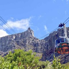 4 Family Activities in Cape Town