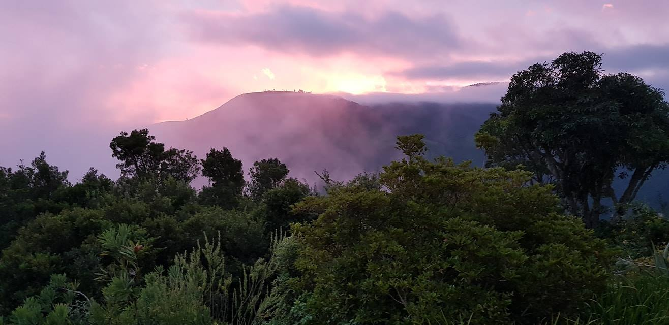 Misty mornings over Hogsback seen from The Edge